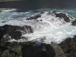 伊豆・伊浜と雲見の境界磯「かんのん」と伊浜「スズメ」で釣り その1