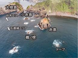 名礁も 潮がなければ ただの岩 (南伊豆・大瀬 釣行記)