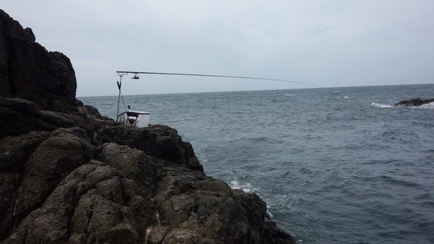 外房・太海 「サムライ」で43センチ黒鯛!