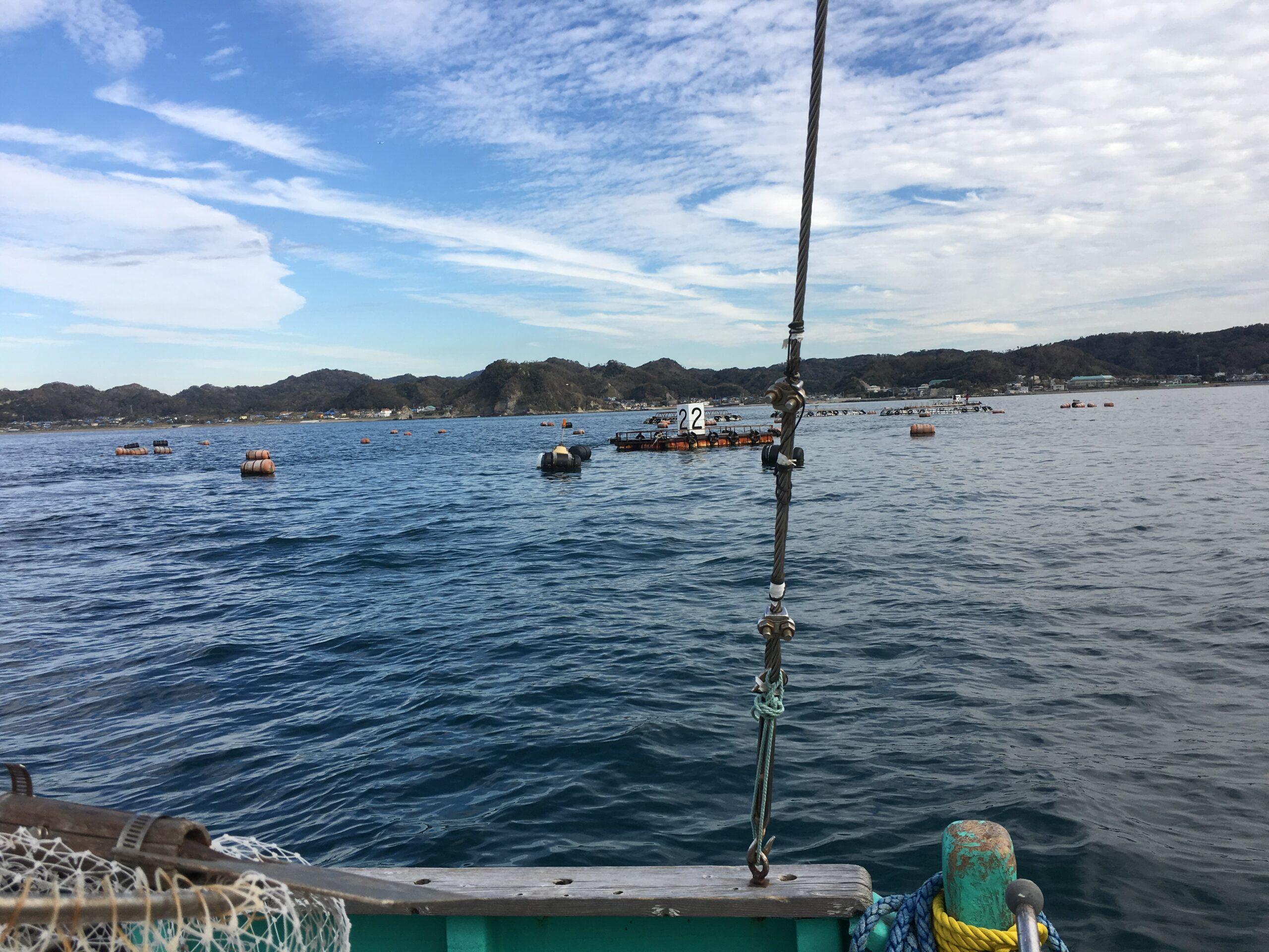 筏チヌ用下向きリール〜アルティスト黒鯛 について