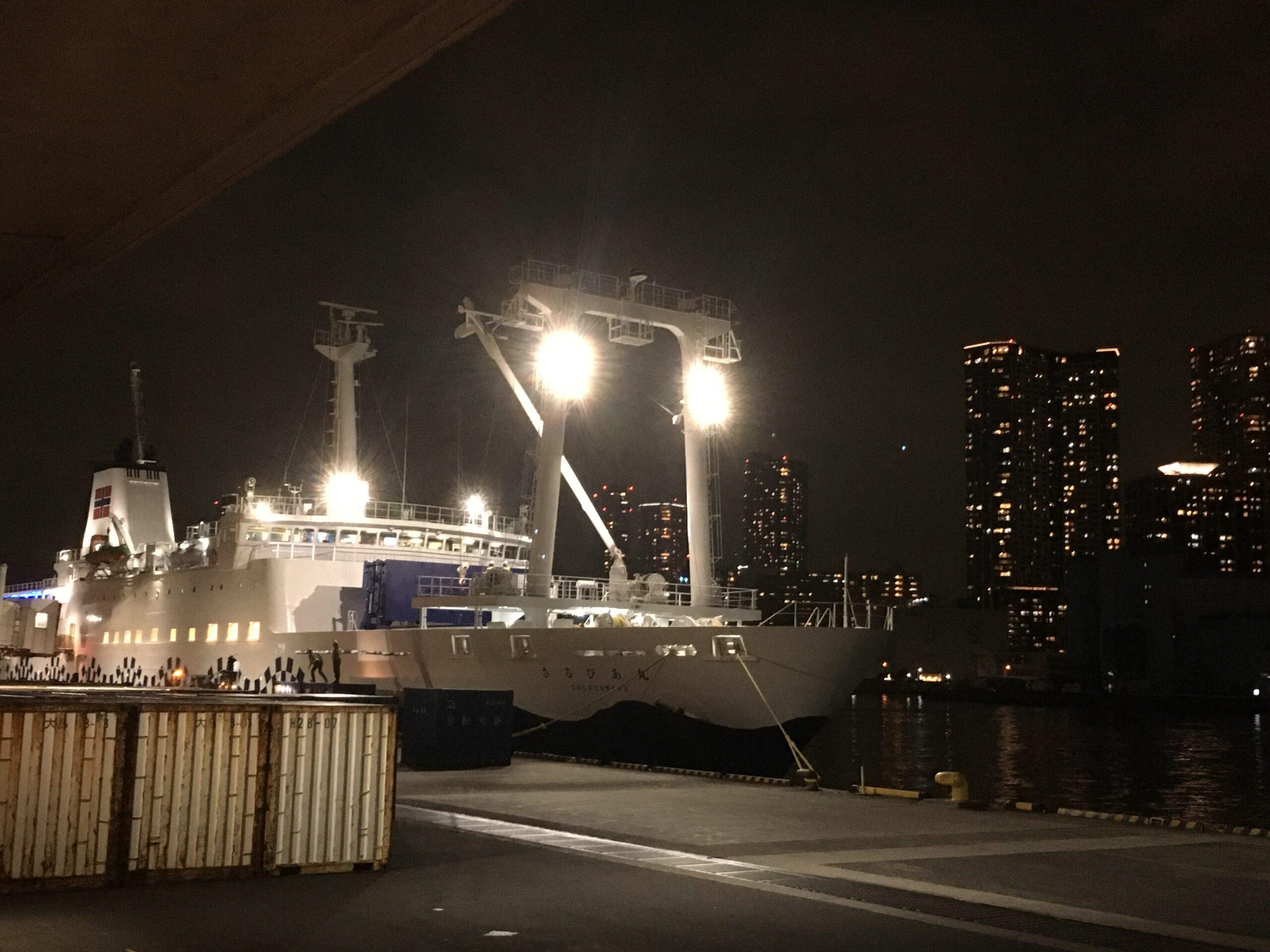 伊豆諸島へ Go To キャンペーン!〜東海汽船・大型船の「往路」のみだがお安くなります