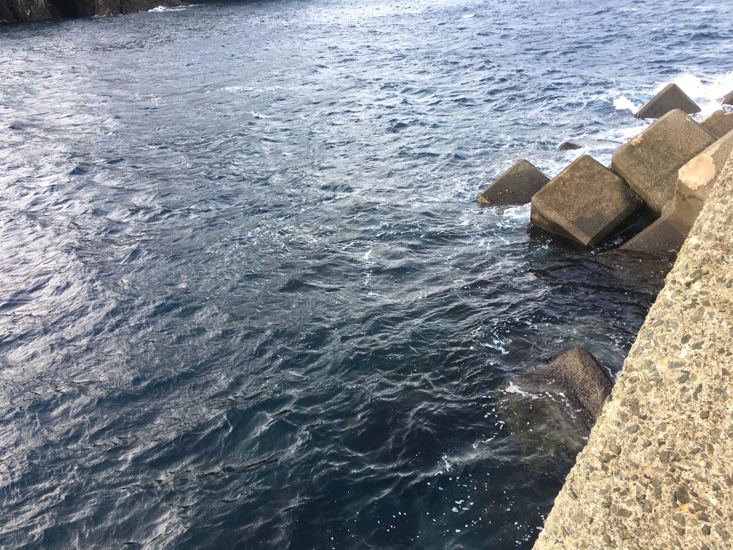 南伊豆・妻良沖堤防で42センチグレ(メジナ)その2 エイジア LCで本流捉える
